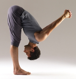 dhanurasana arjuna's bow  yoga international