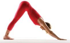 Handstand Tutorial   Yoga International