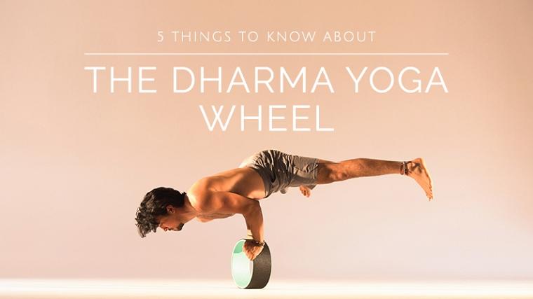 yoga wheel ile ilgili görsel sonucu